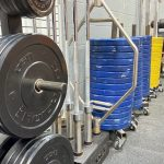 Pathway Fit row of weights